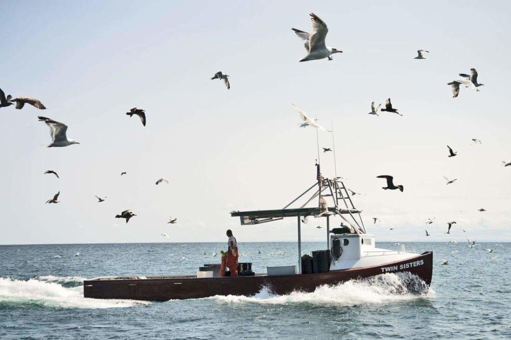 Fiskebåt i atlanten