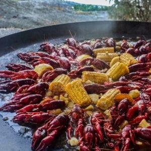 Cajunkräftor med chorizo och majskolvar