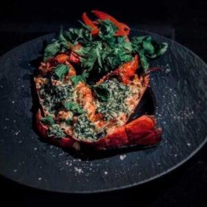 Parmesangratinerad hummer